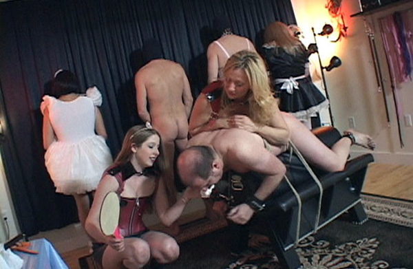 Group Sissy Humiliation